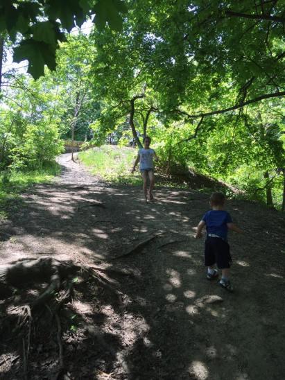 exploringbushpark
